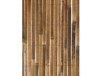 Garden Bamboo Slat Fencing Screening