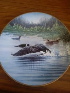 Collector's Dish - Time to Fly Prince George British Columbia image 1