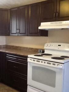 3 Bedroom apartment for rent available now