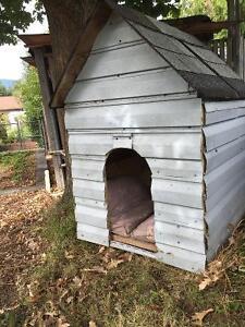 Dog house SALMON ARM
