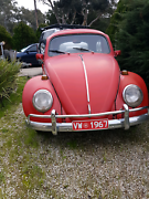 1967 Volkswagen Beetle Redwood Park Tea Tree Gully Area Preview