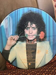 Marc Bolan picture discs. 2available. $25 each Largs Maitland Area Preview