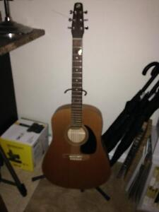 6 string seagull acoustic