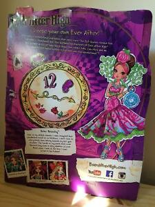 Ever After High Way Too Wonderland Briar Beauty Kitchener / Waterloo Kitchener Area image 3