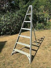 Wanted try pod step ladders