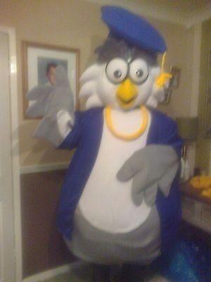 Fancy dress/ owl mascot costume