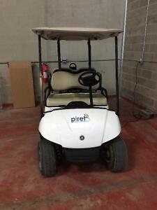 2010 Yamaha 48V electric golf cart