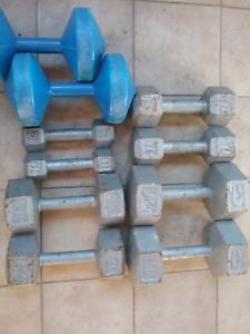 Hand dumbells and weight plates plus few bars Parramatta Parramatta Area Preview