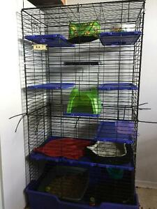 10 level Ferret cage with accessories