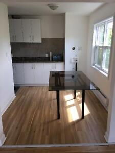 Large 2 bedroom apartment in Dorval