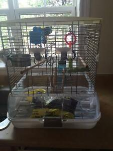 Vision Bird Cage and Accessories