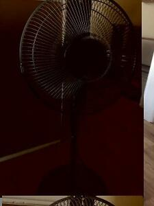 "16"" Honeywell Pedestal fan"