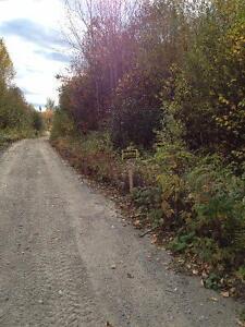Très grand pour maison ou chalet Saguenay Saguenay-Lac-Saint-Jean image 2