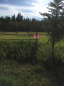 LAND FOR SALE IN RM OF BUCKLAND, PRINCE ALBERT SK