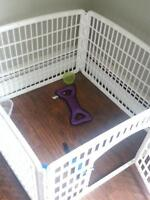 dog play pen/yard/ fence