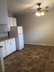 Newly renovated 3 Bdrm Townhouse