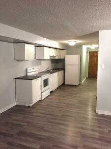 Basement Suite Off Whyte For Rent