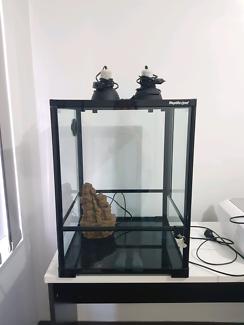 Reptile/frog enclosure