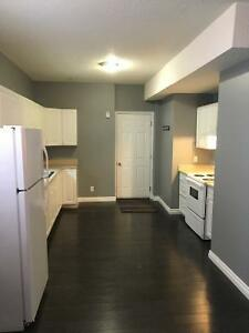 1 Bdrm. Furnished Basement Suite $1400 Timberlea