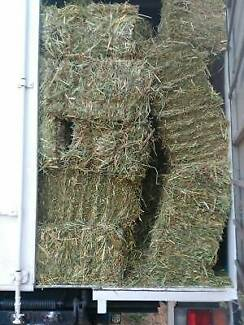 Oaten Hay for sale