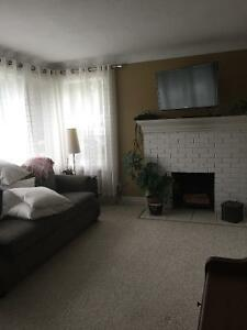 Large room for rent in beautiful home