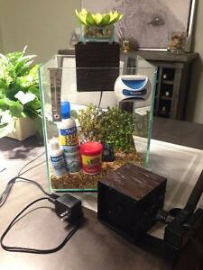 5 Gallon Fluval Chi with Accessories
