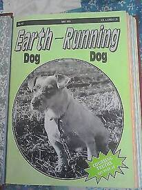 Earth dog running dog collection