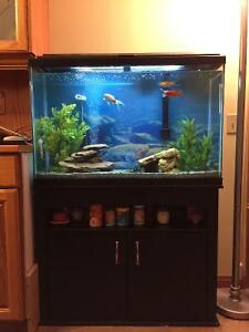45 GALLON AQUARIUM with STAND