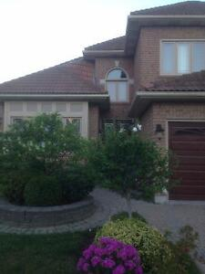 Top-notch House With an Awesome Basement Room Available