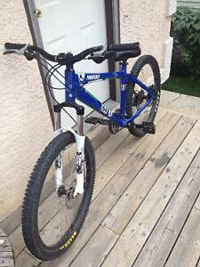 Steal of a deal great dirt mountain bike