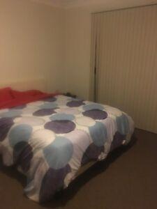 Rent room Penrith Penrith Area Preview