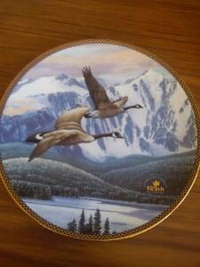 Collector's Dish - Return Home Prince George British Columbia image 1