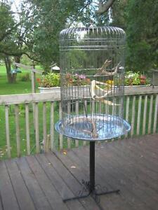 Cage pour perroquet / Parrot cage