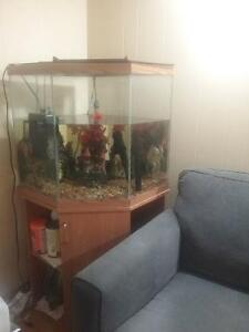 44 gallon tall aquarium with stand $90 or best offer(sold ppu)