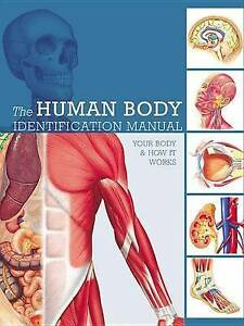 Human Body Identification Manual: Your Body and How It Works by Ashwell, Ken