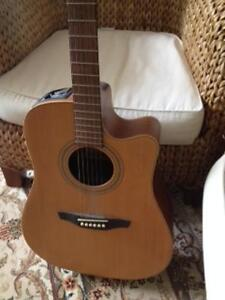 Guitar Acoustic Electric TAKEMINE