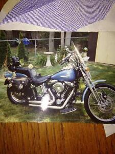 1990 Harley Davidson Springer , soft tail