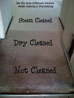 A&A Spectrum cleaning, carpet cleaning & pest control Maitland Maitland Area Preview