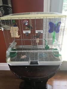 Free: 2 zebra finches with cage and acessories