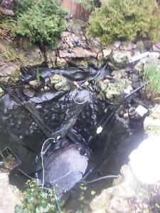 Pond maintenance service