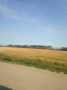 Farm land / acreage for sale, RM of Prince Albert No 461