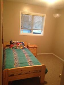 "3 piece twin bed set with new mattress along with 20""LCD tv"
