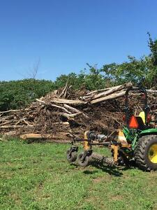 Free massive fire wood trees 15-30 feet long 10-15 inches wide