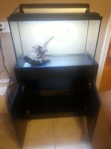 30gallon Aquarium with stand and accessories