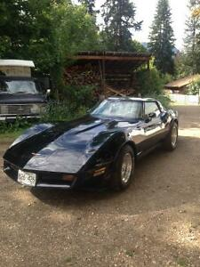 1981 Collector Corvette For Sale   Immaculate Condition
