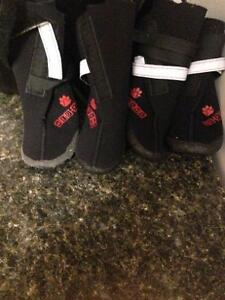 Dog Waterproof Neo-Paws Boots For Saie. St. John's Newfoundland image 1