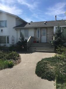 Large 1 bedroom basement located in a excellent westend location