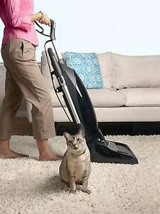 Pet Cleaning & Carpet Cleaning Specialist - Open 7 Days