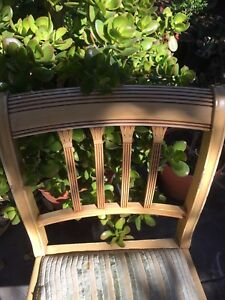 FREE 4 dining chairs Beverly Hills Hurstville Area Preview