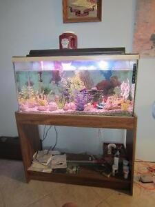 Aquarium with wood stand equipped